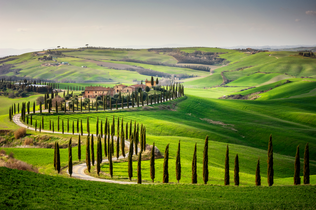 Helitaly Supercar Driving Montalcino and Val d'Orcia